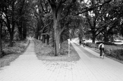 Dessau_02